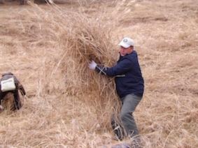 12.11.23草刈り、チムデ-10