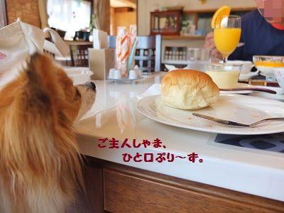 1_20120601211624.jpg