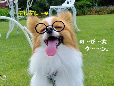 2_20120615195022.jpg