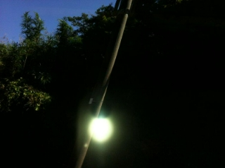 伊豆の光 3