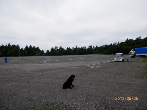 キャベツマラソン 駐車場