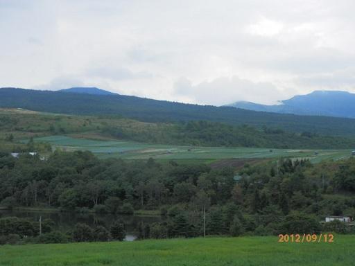 バラギ高原のキャベツ畑