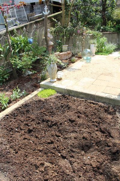 庭づくり 芝 20120629