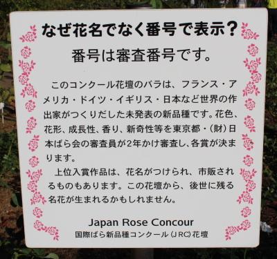 03_20121023083619.jpg