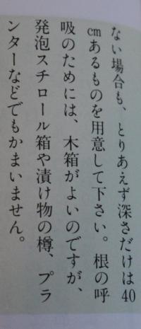 07_20120511174028.jpg