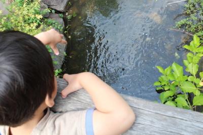 12_20120601185204.jpg