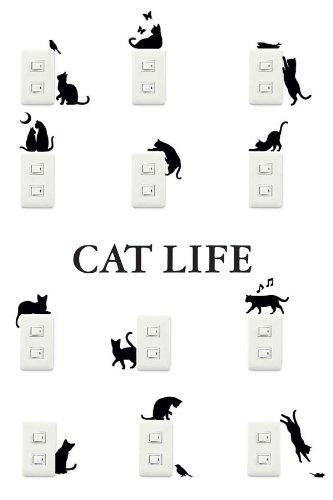 catlife.jpg