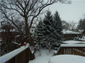 20121227_Snow_1.png