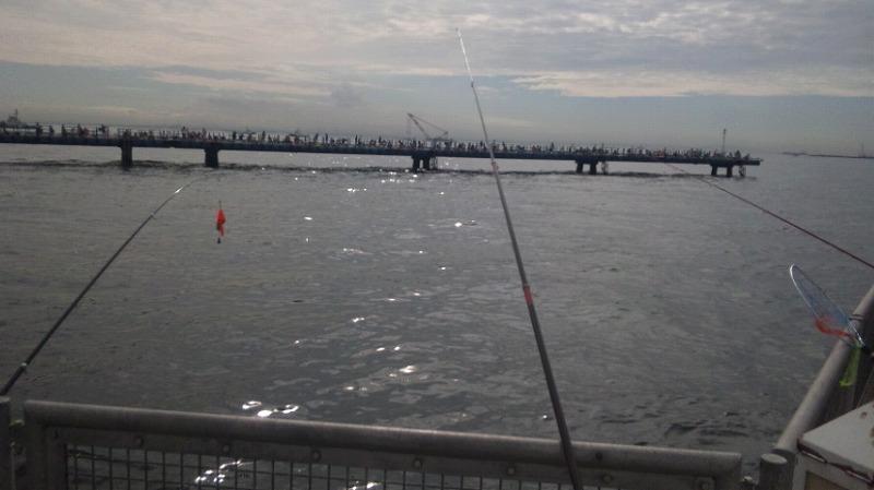 旧護岸より桟橋を見る