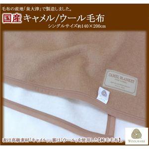 【国産】キャメル/ウール毛布!リバーシブルタイプ 純毛毛布(シングル)