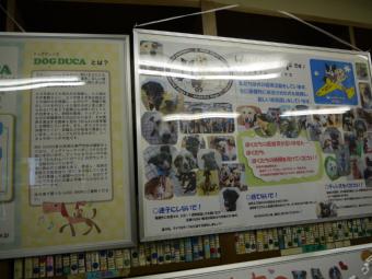 wanndoku_20120918112209.jpg