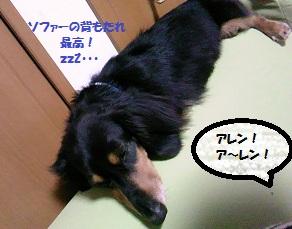 2012061801.jpg
