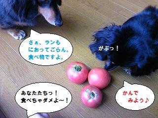 2012062904.jpg