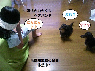 20120701001.jpg
