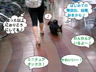 2012070101.jpg