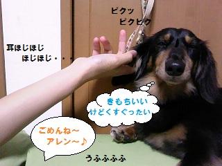2012070203.jpg