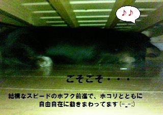 2012070504.jpg