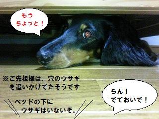 2012070505.jpg
