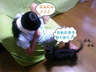 2012071002.jpg