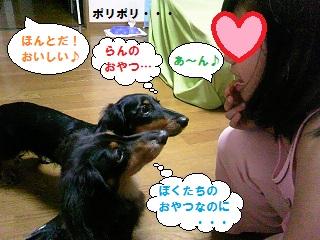 2012071401.jpg