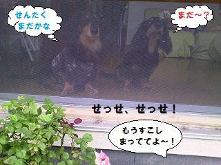 2012071601.jpg