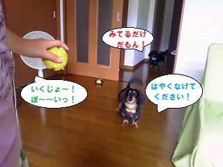 2012071803.jpg