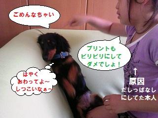 2012071903.jpg