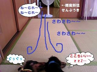 2012072003.jpg