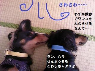 2012072004.jpg