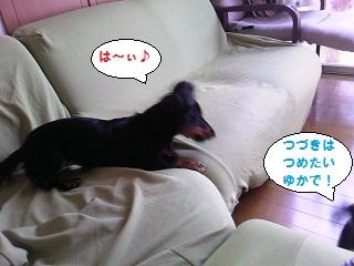 2012072203.jpg