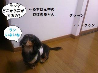 2012072501.jpg