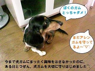 20120803001.jpg