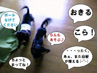 2012080704.jpg