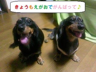 2012083001.jpg