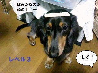 2012083102.jpg