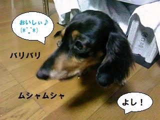 2012083103.jpg