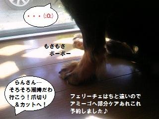 2012090204.jpg