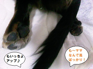 2012090604.jpg