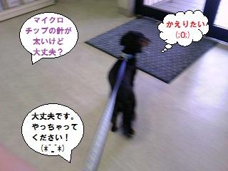 2012091502.jpg