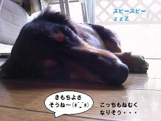 2012091703.jpg
