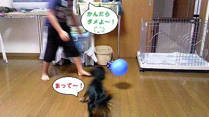 2012092303.jpg