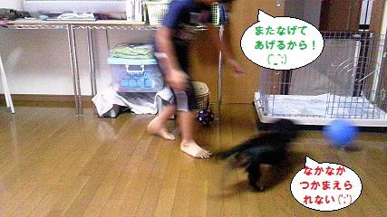 2012092304.jpg