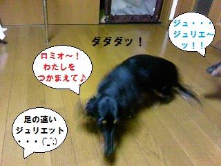2012101304.jpg