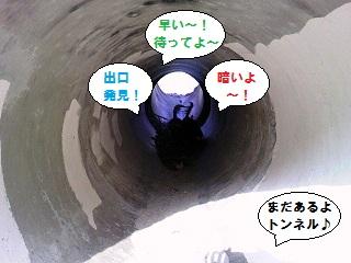 2012122302.jpg