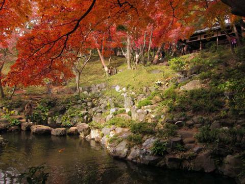 殿ヶ谷戸庭園4