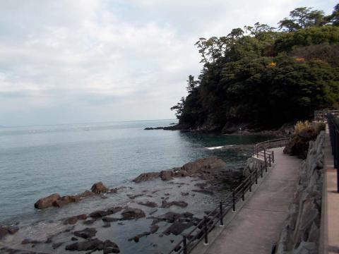 真鶴半島3