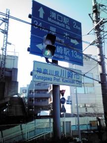 niko25.jpg