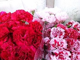 fc2blog_20120921192908e47.jpg
