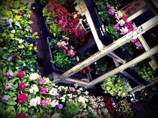 fc2blog_2012093013531449e.jpg