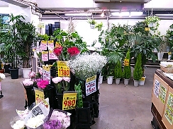 fc2blog_20121014173450d1a.jpg